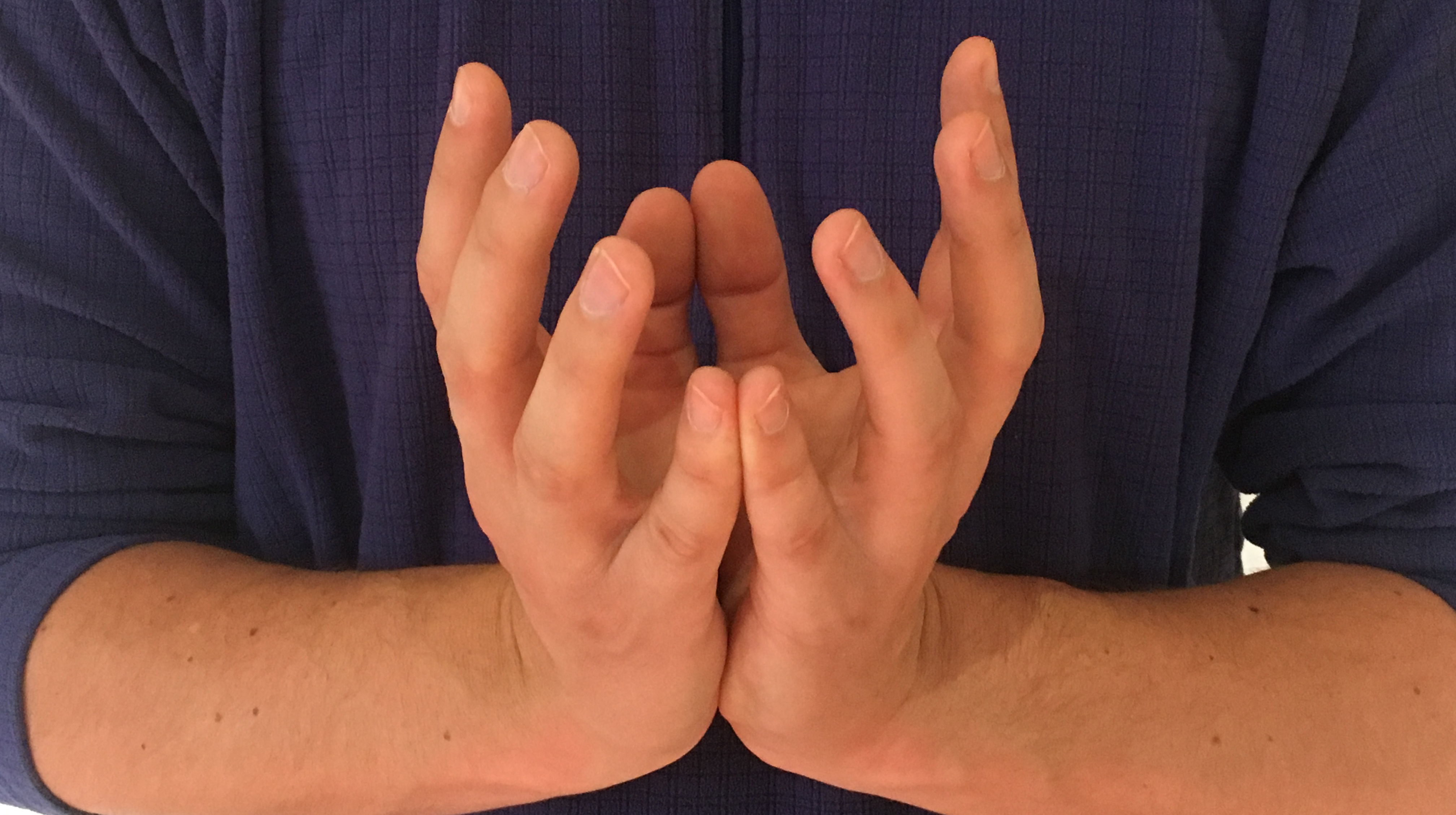 Mudras for inner peace let it go yoga and the bases of your palms pressed together as you separate the centers of your palms and fan out the rest of your finger revealing your lotus flower izmirmasajfo